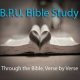 Bible Study: Proverbs 7-9