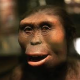 Evolution Refuted by Their Own Evidence