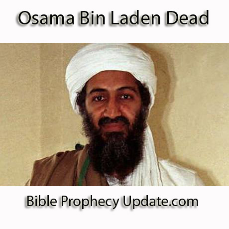 osama bin laden and george bush funny. george bush osama bin laden 9/